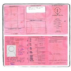Einbürgerungsurkunde NE-FR