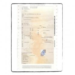 Certificat immatriculation recto FR